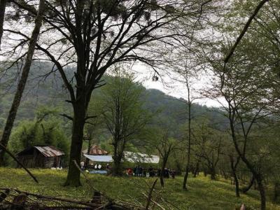 لفورتا هفت آبشار |تور یک روزه تعطیلات عیدفطر|